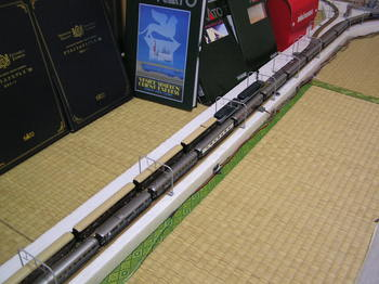 P1020229.JPG